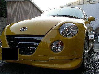 暖かくなったから黄コぺを洗車♪