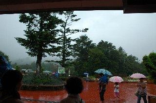 雨が降ってきました(T_T)