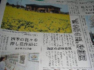 菜の花畑 新聞記事