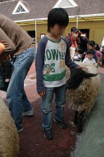 羊飼いの小僧?